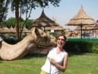 Ramses the camel