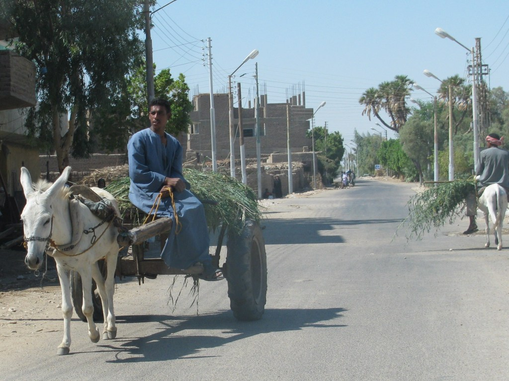 Street scene, West Bank, Luxor