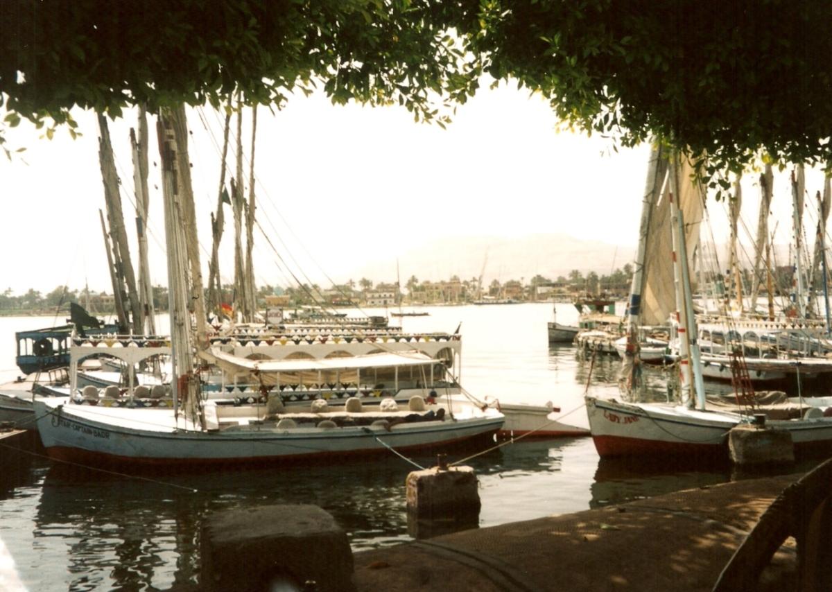 Nile palace Hotel boats